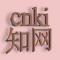 cnki:中国知网